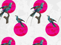 Pink and blue bird pattern WIP