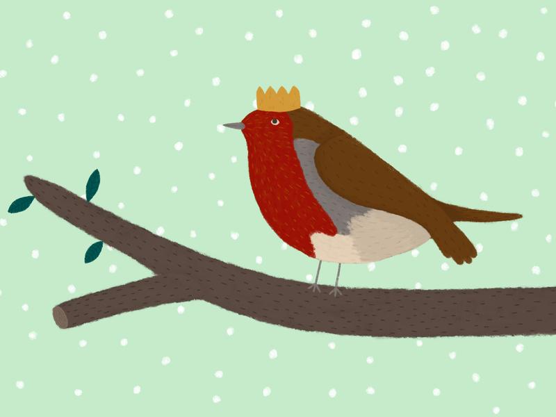 Robin funny cute digital illustration digital art bird robin card design greetings card christmas card christmas design illustration adobe photoshop