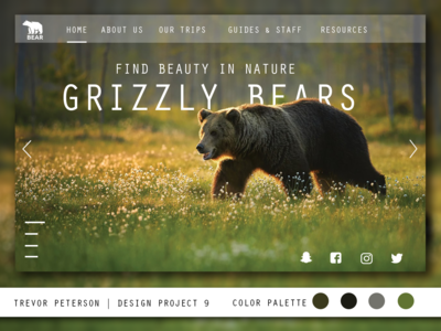 Daily Web/UI Design 09 | Grizzly Bear Website
