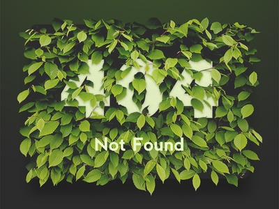 404 Not Found web ux ui store photo material interface flowers flat e-commerce background 404