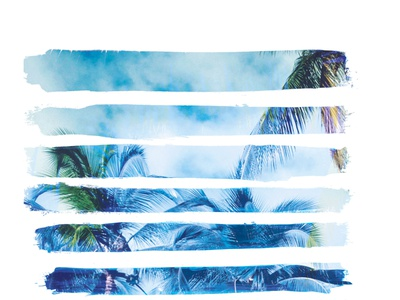 watercolour Palm stripes t-shirt branding illustration tee graphic apparel fashion