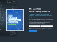 Landing page - The Business Predictability Blueprint