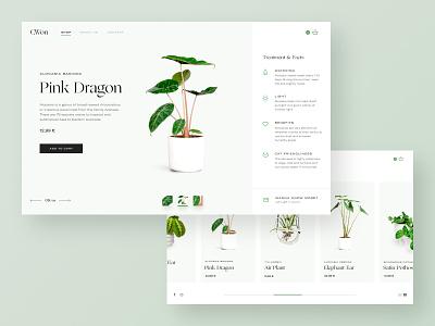 Flower Shop Website icons minimal green uidesign website web ux ui design typography plant shop ecommerce interface ui design