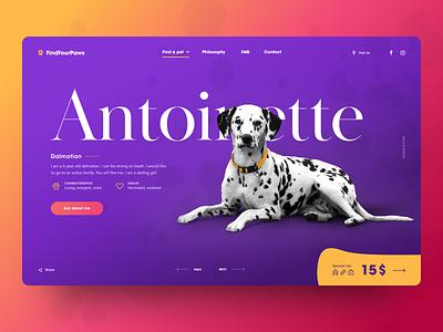 Find Four Paws – Dog Adopt Service adopt typography animal orange purple dog pet landing website web ui design uidesign ux interface ui design