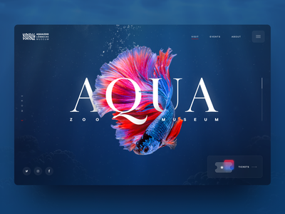 Aquazoo Website underwater blue siamese museum animal zoo glass dark water fish ux ui website web uidesign ui design interface design