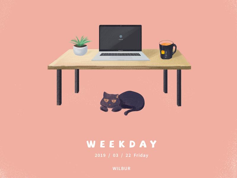 Weekday 设计 插图