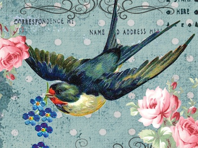 Swallow Card Design