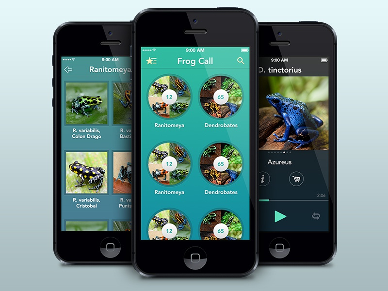 Frog Call app frogs player grid