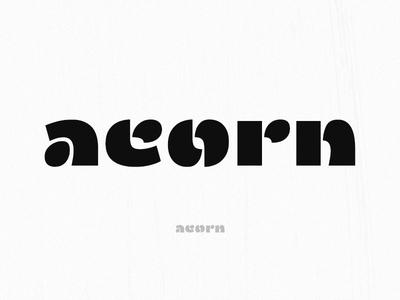 Acorn Шрифт typeface type latin glyph font a