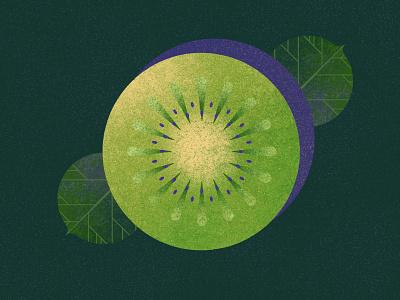 Kiwi ui cook food vector minimalist modern illustration geometric flat fruit kiwi