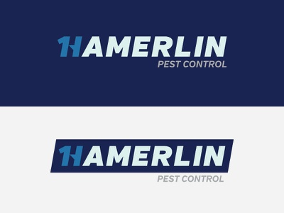 Hamerlin Logo hamerlin brand identity logo