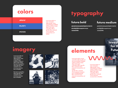 Brand Identity Guidelines for EMAA brand style guide brand style guide branding concept brand designer brand identity branding design branding