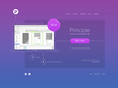Principle pricing page redesign—Daily UI #030