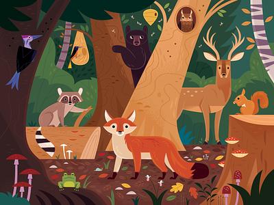 In the Forest kid lit art kid lit bear fox forest adobe illustrator vector wildlife nature animals illustration