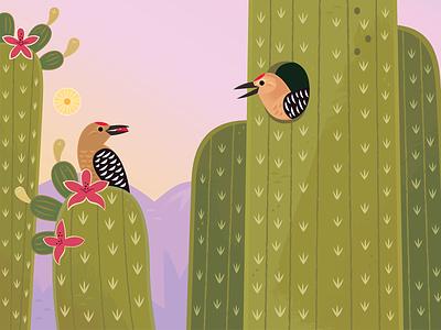 Gila Woodpecker kidlitart picture book vector woodpecker birds birding desert wildlife nature animals illustration