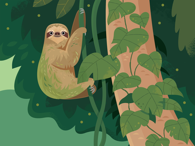 Sloth kidlitart rainforest sloth vector wildlife nature design animals illustration
