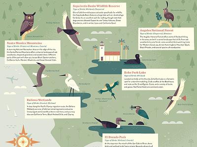 Birding Los Angeles california los angeles icon design icon bird illustration bird scientific illustration nature city map illustrated map map design map