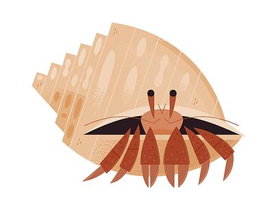 Hermit Crab science aquarium icon design icons wildlife nature crab beach ocean animals illustration