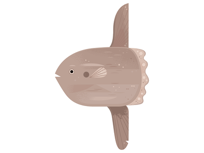 Sunfish icon spot illustration animal illustration science wildlife nature ocean fish animals illustration