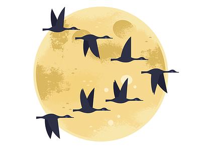 Moonlight Migration moon autumn animals nocturnal birding nature wildlife birds spot illustration illustration