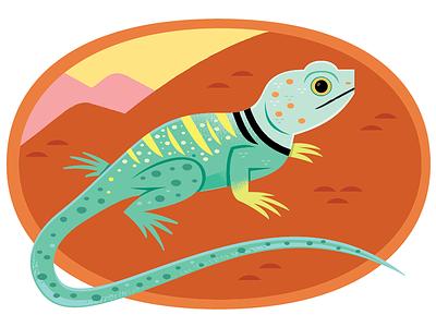 Collared Lizard vector lizards desert animals desert nature wildlife animals illustration