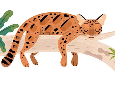 Clouded Leopard children kids lit cats vector wildlife nature design animals illustration