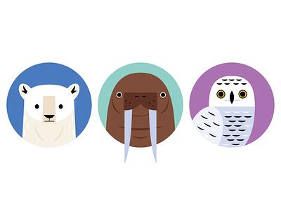 Arctic Icons animal icons icon design owl polar bear walrus polar animals animals science nature wildlife arctic icons