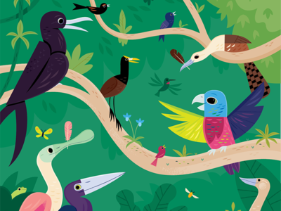 Iguaca childrens books kids lit folktale birds wildlife nature animals illustration
