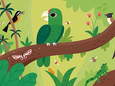 Iguaca childrens books kids lit character design birds vector wildlife nature animals illustration