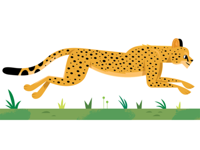 Cheetah childrens book childrens kids lit african animals africa cheetah vector wildlife nature design animals illustration