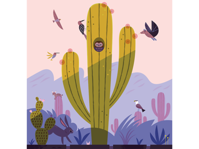 Saguaro desert wildlife desert owl cactus saguaro national parks vector wildlife nature animals illustration