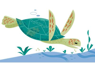 Sea turtle ocean life sea turtle ocean travel vector science wildlife nature animals illustration