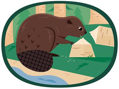 Beaver forest woods beaver vector wildlife nature animals illustration