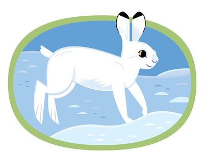 Snowshoe Hare kidlitart childrens illustration rabbit bunny graphic design vector wildlife nature design animals illustration