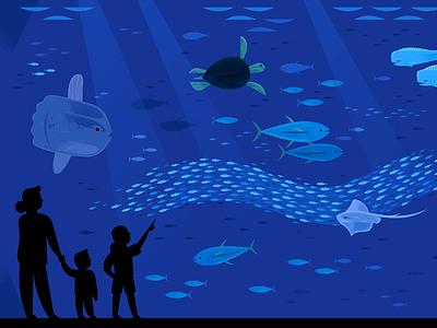 Monterey Bay Aquarium Open Sea wildlife nature sea turtle deep sea ocean illustration fish fish illustration aquarium