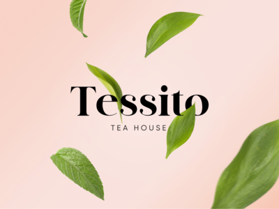 Tessito brand identity