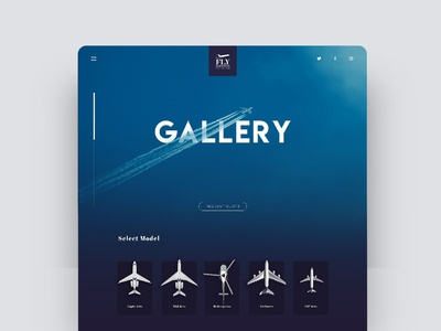 Private Jet Gallery Website ui  ux design uidesign blue website gallery website layout private jet blue ux minimal vector typography illustration logo icon branding design