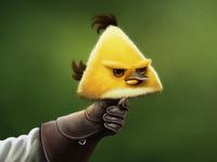 Angry Falconry