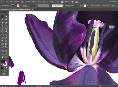 Dark-Violet Tulip Process