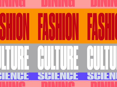 The RaDD Typography Animation dynamic typography animation california san diego dinning culture fashion scence real estate the radd slides typography color motion graphics motion animation branding