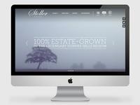 Stoller Website