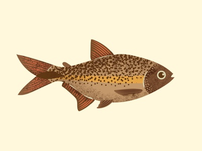 Lambari jungle illustration design illustrator cool design cool grain texture grain fishing water amazon tropical brazil river lambari peixe fish