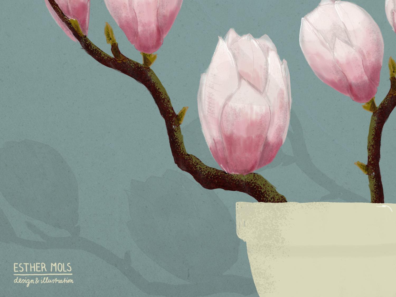 Magnolia floral art flowers illustration flower illustration magnolia magazine illustration editorial illustration illustration