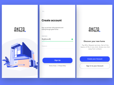 Aneza Sign Up Page