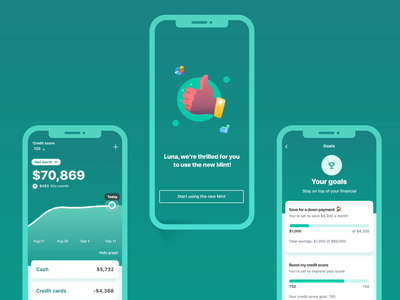 Meet the new Mint animation ux mobile app data viz graphic finance app budget bills finance intuit mint
