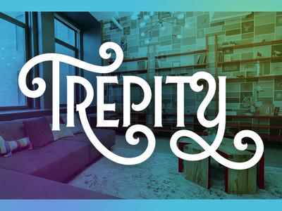 Trepity ID Work handdrawn script logo id branding startup