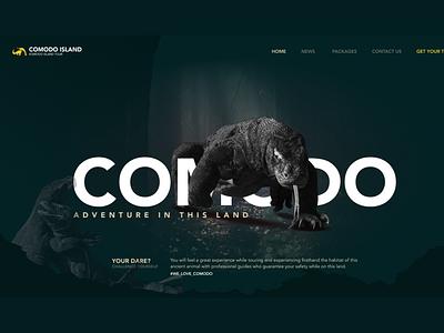 Comodo Island web designer website webdesign web ui  ux design