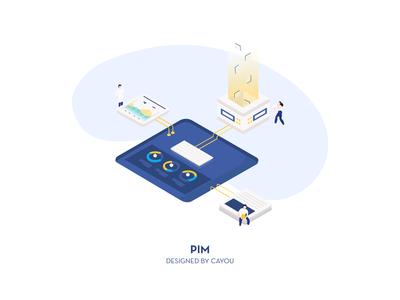 #7 Solutions: PIM