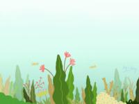 Beautiful deep sea