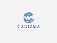 Carizma Technologies Logo